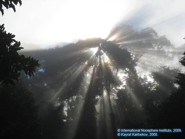 Рис. 23. Игра солнечных лучей утром после погружения.